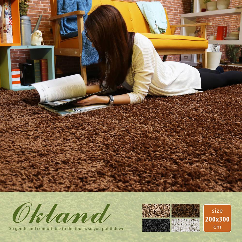 Okland 奥克兰素色简约长毛地毯(200*300公分)