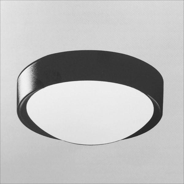 黑色金屬烤漆吸頂燈(QD30612)