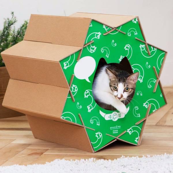 貓滾滾-綠色